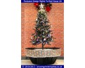 Snowing Christmas Tree - Black Flower Pot Base With Beautiful White Patterned Skirt - 2013